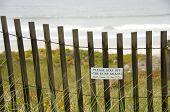 Dune Grass Sign