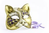 pic of carnivale  - A gilded Venitian Carnivale mask cat isolated on white - JPG