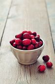 Cranberries In Ceramic Bowl