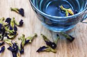 Herbal Blue Tea