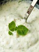 Yogurt sauce with aromatic herbs