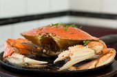 San Francisco Dungeness Crab