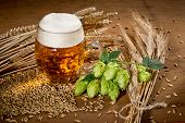 stock photo of raw materials  - Still life with glass of beer and raw material for beer production - JPG