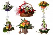 Collage Of Various Colorful Flower Arrangements