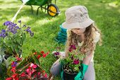 image of wheelbarrow  - Full length of a little young girl engaged in gardening - JPG