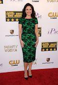 LOS ANGELES - JAN 16:  Julia Louis-Dreyfus arrives to the Critics' Choice Movie Awards 2014  on January 16, 2014 in Santa Monica, CA