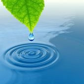 High resolution conceptual water or dew drop falling from a green fresh leaf on a blue clear water m