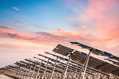 Solar Power Farm In Sunset