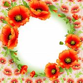 Background Frame With Poppies In A Circle And Place For Text