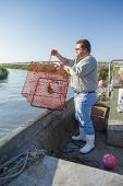 commercial fisherman dropping crab trap into water