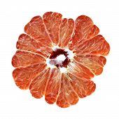 Citrus with seeds macro closeup