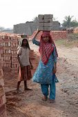 SARBERIA,INDIA, JANUARY 16: Brick field workers carrying complete finish brick from the kiln. Tools