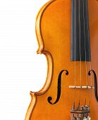 Body Of Violin With Copy Space