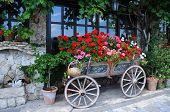 Garden In The Cart