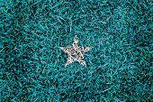 Somalia Flag Color Grass Texture Background