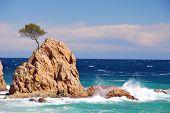 Islet over rough sea