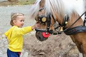 Little Girl Pets A Pony
