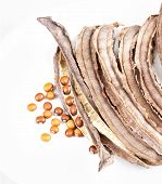 stock photo of bean-pod  - dried Winged Bean seed and bean pod on white dish - JPG