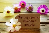 Sunny Label With Life Quote Be The Reason Someone Smiles With Cosmea Blossoms