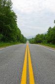 Road In Cape Of Breton Highlands National Park