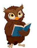 Illustration of an Owl Thinking While Reading a Book