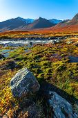 Mountain River, Stones, Moss