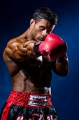 picture of boxers  - Strong muscular boxer in red boxing gloves - JPG