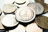 pic of lien  - close up of one polish zloty coins - JPG