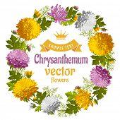 stock photo of chrysanthemum  - Retro round frame from chrysanthemum - JPG