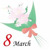 March 8 - International Women's Day
