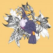 pic of toucan  - Floral Vector Vintage Card with Exotic Flowers and Toucan - JPG