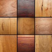 stock photo of woodgrain  - real wood veneer collage images put together ready for your design - JPG