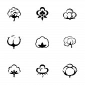 image of boll  - Vector cotton icon set on white background - JPG