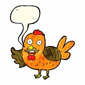 stock photo of roosters  - cartoon old rooster with speech bubble - JPG