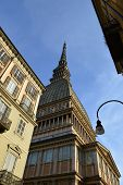 picture of turin  - Image of the Mole Antonelliana in Turin the highest monument of the city - JPG