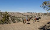 picture of cowgirls  - young American Australian man as father or horse instructor of young girl or teen daughter riding little pony wearing cowgirl hat in wild west alike Summer vacation ride - JPG