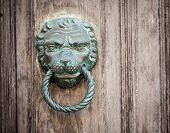 stock photo of lion  - Ornamental lion door pull in venice italy - JPG