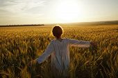picture of beatitudes  - Young woman in a field of ripe wheat - JPG