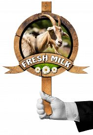 picture of goat horns  - Hand of chef holding a wooden sign with head of goat with horns green grass and daisy flowers wooden ribbon with text Fresh milk - JPG
