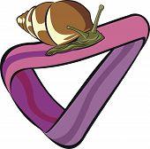 Snail At Moebius Strip