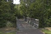 Jogging Trail 3