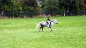 Child Riding Short Horse.Equestrian.Riding. Sport. Leisure. poster
