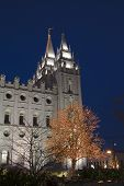 Salt Lake Temple East Spire And Christmas Tree