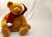 Christmas Teddy2