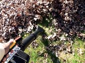 Fallen Sie Yard Arbeit - Laubbläser