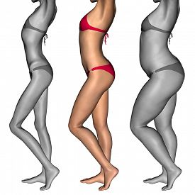 stock photo of skinny fat  - Concept or conceptual 3D woman or girl as fat - JPG