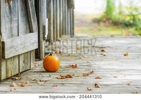 poster of Small Pumpkin Sitting On Wooden Deck Outside Rustic Barn Doors, Autumn Leaves On Ground