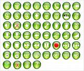 Web button green pack