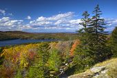 Fall Foliage Colors And Details In Acadia National Park In Maine, New England, During Their Famous A