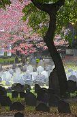 Historic Landmark Cemetery In  Boston, Massachusetts